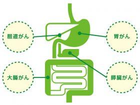 microarray-tokucyou